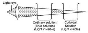 Class 9 Science Sample Paper 4(Term 1) Class 9 Notes | EduRev