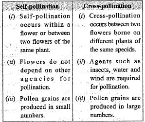 Previous Year Questions - How do Organisms Reproduce? Class 10 Notes | EduRev