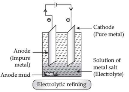 Worksheet (1): Metals and Non-metals Class 10 Notes | EduRev