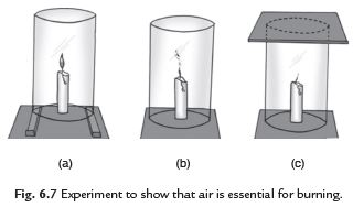 Long Answer Questions - Combustion and Flame Notes | EduRev