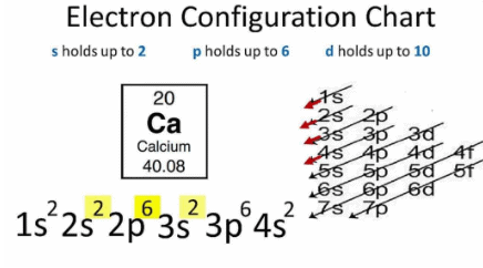 NCERT Solutions - Periodic Classification of Elements Class 10 Notes | EduRev