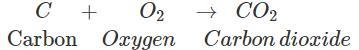 Class 8 Science Sample Paper - 9 Class 8 Notes | EduRev