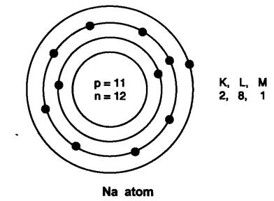 Short and Long Answer Questions- Structure of the Atom Class 9 Notes | EduRev