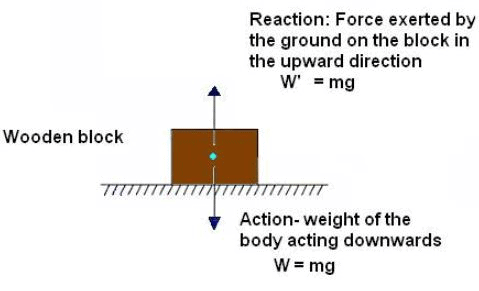 Theory - To study the Third Law of Motion using two spring balances, Physics, Science, Class 9 Class 9 Notes | EduRev