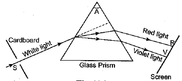 Previous Year Questions - The Human Eye and Colorful World Class 10 Notes | EduRev