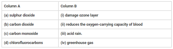 NCERT Exemplar Solutions: Pollution of Air and Water Class 8 Notes | EduRev