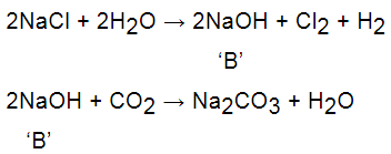 NCERT Exemplar - Acids, Bases and Salts Notes | EduRev