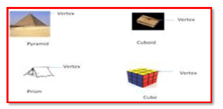 Chapter Notes - Visualizing Solid Shapes Class 7 Notes | EduRev