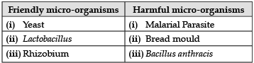 Sample Question Paper (2020-21)- 2 Class 8 Notes   EduRev