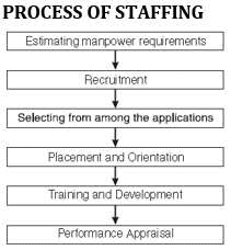 Chapter Notes - Chapter 6 : Staffing, BST, Class 12, CBSE | EduRev Notes