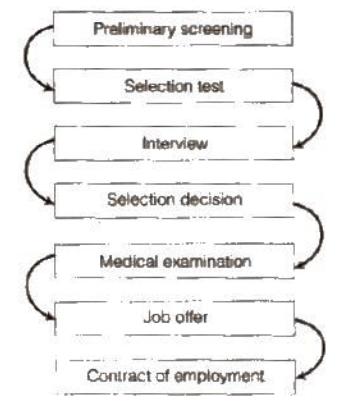 NCERT Solutions - Staffing Commerce Notes | EduRev