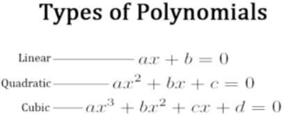Polynomial and its Types Mathematics Notes | EduRev