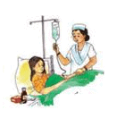 NCERT Solution - Chapter 3: FROM TASTING TO DIGESTING, Class 5, Environmental Studies Class 5 Notes | EduRev
