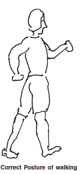 Chapter 4 - Posture Correct Posture, Chapter Notes, Class 12, Physical Education | EduRev Notes