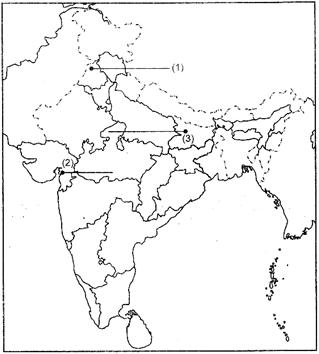 Class 12 History Solved Paper (2014 Delhi Set-I) Humanities/Arts Notes | EduRev