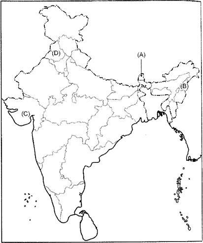 Class 12 Political Science Solved Paper (2014 Delhi Set-I) Humanities/Arts Notes | EduRev