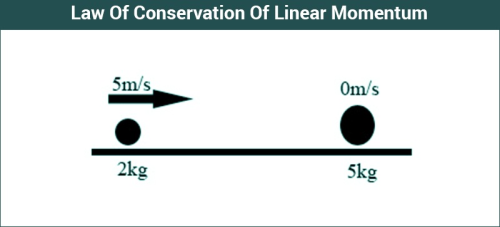 Law of Conservation of Linear Momentum Class 11 Notes   EduRev