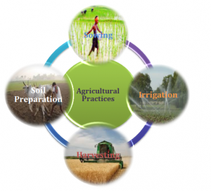 Agriculture & Agricultural Practices Class 8 Notes   EduRev
