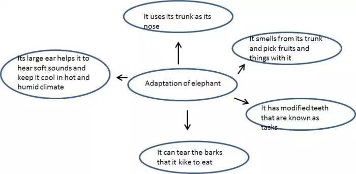 Weather,Climate and Adaptations of Animals to Climate - Class 7 Class 7 Notes | EduRev