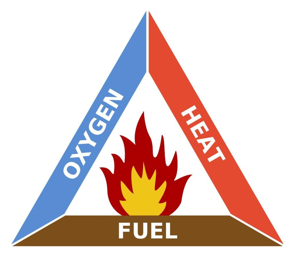 Combustion and Flame Notes Class 8 Notes | EduRev