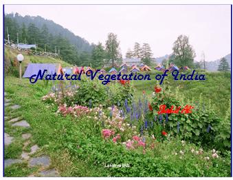 Natural Vegetation of India - Indian Geography, UPSC, IAS UPSC Notes | EduRev