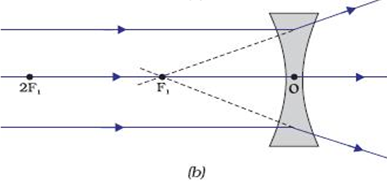 Reflection - Physics CLAT Notes | EduRev