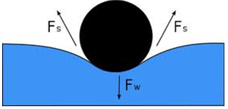 Hydrostatics Physics - Physics Notes | EduRev