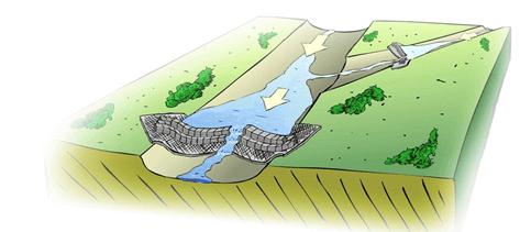 Soils in India - Geography, UPSC, IAS UPSC Notes | EduRev