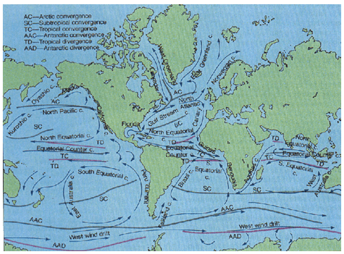 Ocean Currents - Physical Geography, UPSC, IAS. UPSC Notes | EduRev