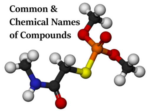Branches of Science, Elements and Compounds CLAT Notes   EduRev