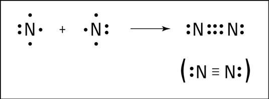 Overview of Carbon and Covalent Bonding in Carbon Class 10 Notes | EduRev