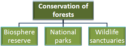 NCERT Solution- Forest and Wildlife Resources Class 10 Notes | EduRev