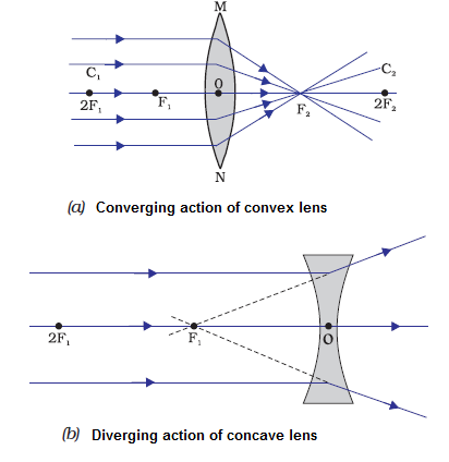 Types and Power of Lenses and Magnification Class 12 Notes   EduRev