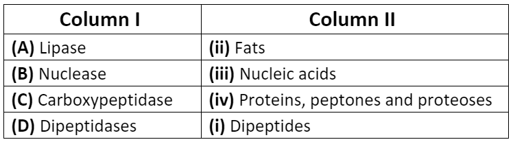 NCERT Exemplars - Digestion and Absorption Notes | EduRev