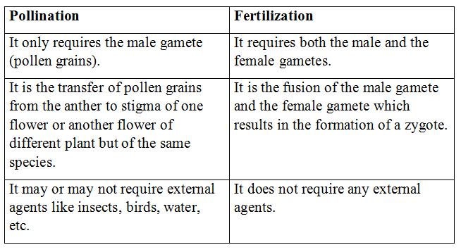 NCERT Solutions - How do organisms Reproduce Class 10 Notes   EduRev