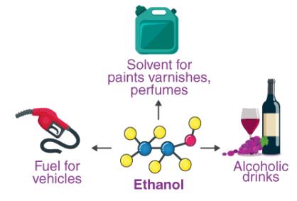 Alcohols, Phenols Class 12 Notes | EduRev