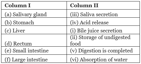 NCERT Solution - Nutrition in Animals Class 7 Notes   EduRev