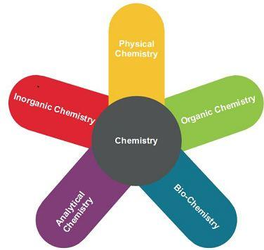 Importance and Scope of Chemistry Class 11 Notes | EduRev