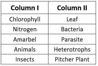 NCERT Solution - Nutrition in Plants Class 7 Notes | EduRev