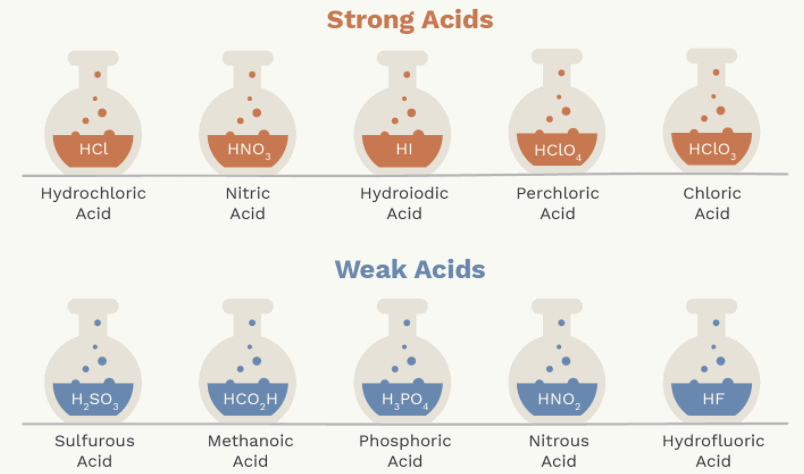 Overview of Acids and Bases Class 10 Notes   EduRev