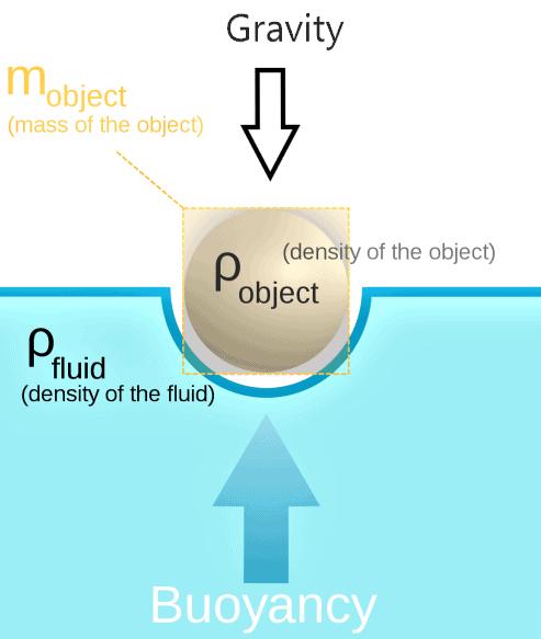 NCERT Exemplar - Gravitation (Floatation) ( PART - B) Class 9 Notes | EduRev