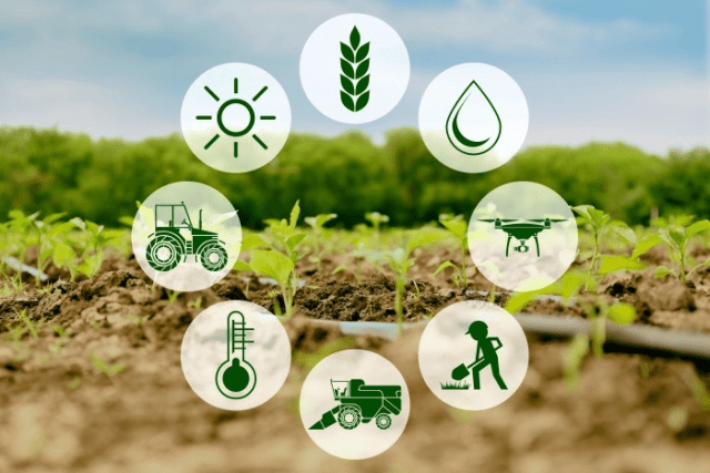 Short Answer Questions Chapter 4 - Agriculture, Class 10, SST (Geography) | EduRev Notes