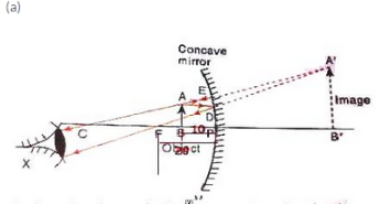 Solutions of Reflection of Light (Page No- 200) - Physics By Lakhmir Singh, Class 10 Class 10 Notes   EduRev