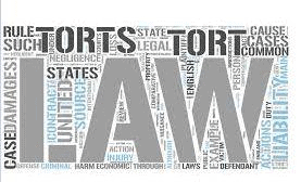 Introduction - Law of Tort, Notes CLAT Notes | EduRev