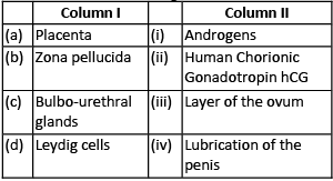 Previous Year Questions (2016-20): Human Reproduction NEET Notes | EduRev