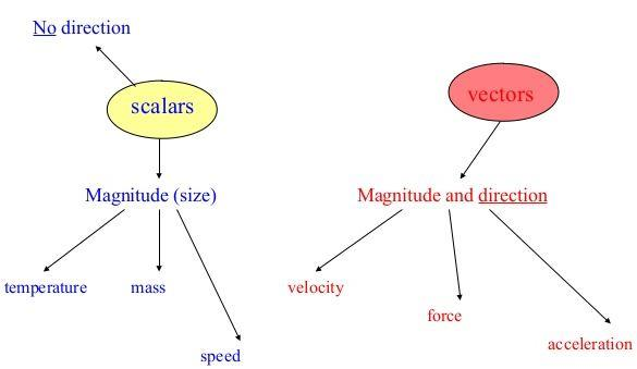 Types of Vectors and Scalars - Motion in a Plane, Class 11, Physics | EduRev Notes
