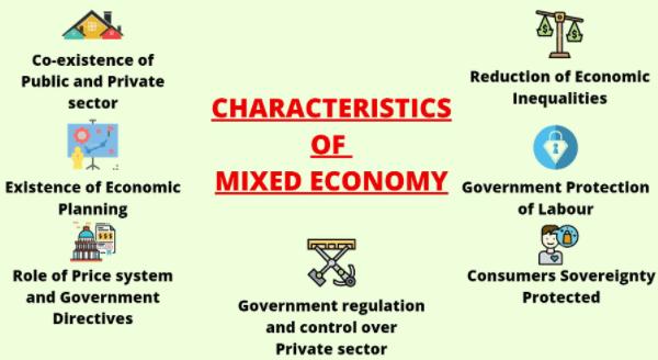 Ramesh Singh: Summary of Mixed Economy & Sectors of Economy Notes | EduRev