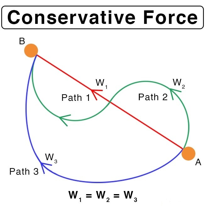 Internal Work and Conservative Force Class 11 Notes   EduRev