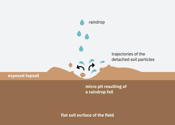 NCERT Summary: Soils- 1 UPSC Notes   EduRev