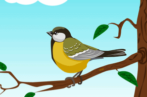 NCERT Solutions - वह चिड़ियाँ जो Class 6 Notes | EduRev